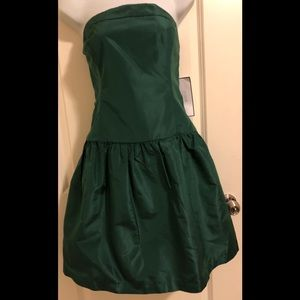 💃 💃 NWT J.CREW  strapless Silk dress